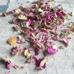 Rosa petali