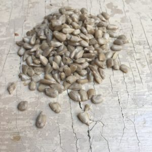 Semi digirasole Bio
